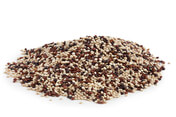 Quinoa Tricolore 2